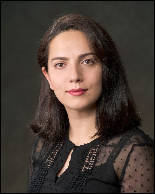 Dr. Mozhdeh Shahbazi , University of Calgary , Director